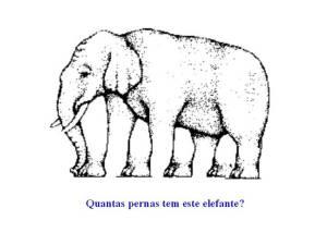 ilusão de ótica desenho de elefante