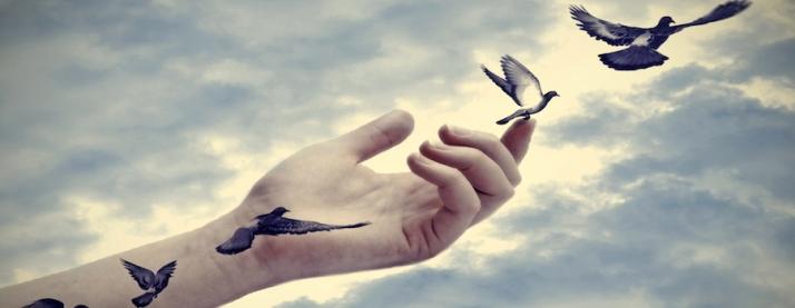 tatuagens de pássaros que alçam voo